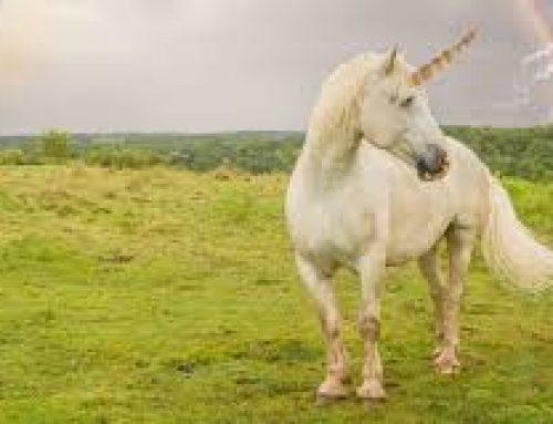 Chasing the Unicorn